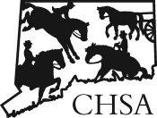CHSA-Logo-350